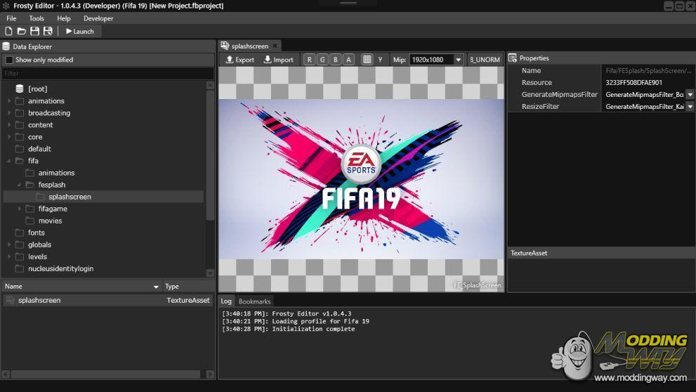 FIFA 19 First Modding Steps - FIFA 19 Video Game at